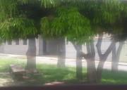 Quarto Individual em Local tranquilo do Cambuí em Campinas