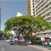 Vaga em república feminina em Belo Horizonte