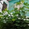 Aluga – se quartos Vila Madalena/Pinheiros